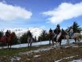 Equitazione 2